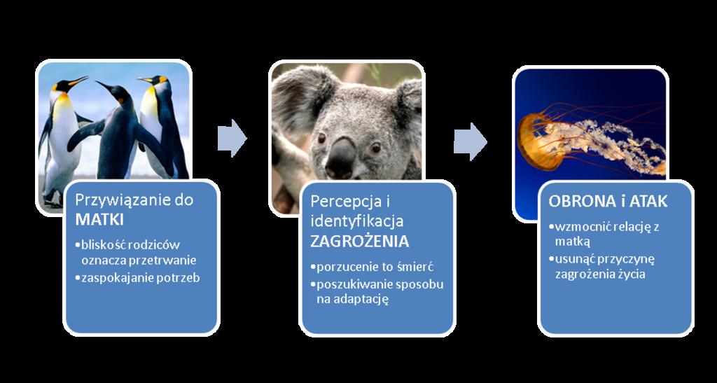 stronamarsa.pl - zazdrość rodzeństwa - dziecięca logika